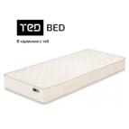 ТЕД - Adeona 19cm
