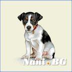 Декоративни възглавници - Кученце
