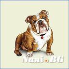 Декоративни възглавници - куче Булдок