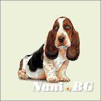 Декоративни възглавници - hush puppies dog