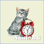 Декоративни възглавници - коте и часовник