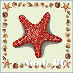 Декоративни възглавници - морска звезда